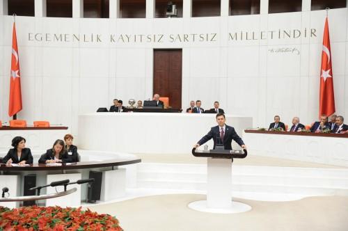 Milletvekili Yemin Töreni (2)